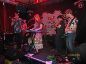 HMF 2014 - Indie night - SEVEN INCHES at The Pack Horse